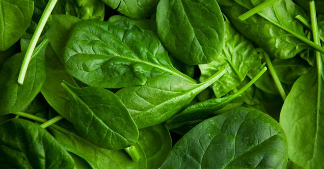 Rau xanh: Các loại rau như bắp cải, cải lá, cải xoăn và cải cầu vồng là món hay được ăn vào dịp năm mới ở nhiều quốc gia vì lý do đơn giản: lá của chúng giống như những đồng tiền gấp, tượng trưng cho tương lai giàu có. Ảnh: Rd.