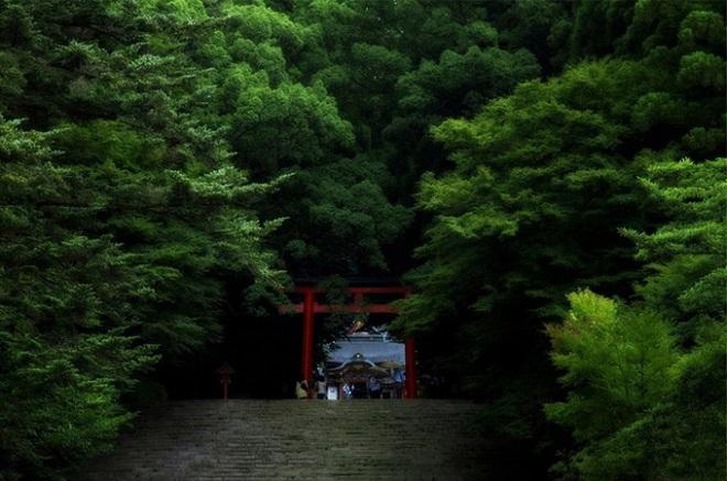 SUZUKI-Swift-LongArticles-2012-marzo-torii-03-1461815065_660x0