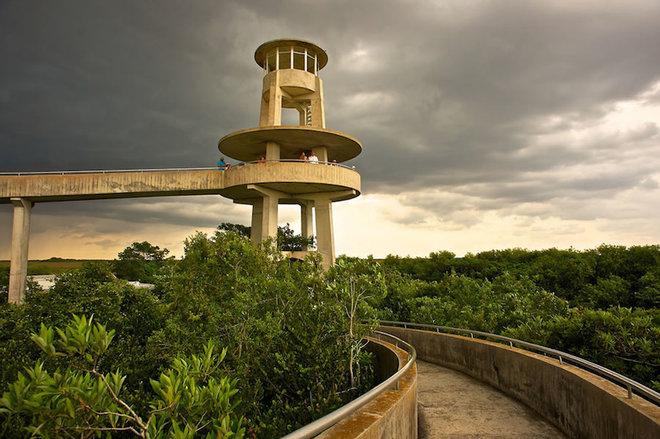 Everglades-5-1462789691_660x0