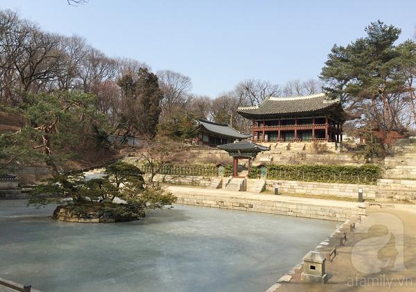 Một góc Huwon ngày cuối Đông