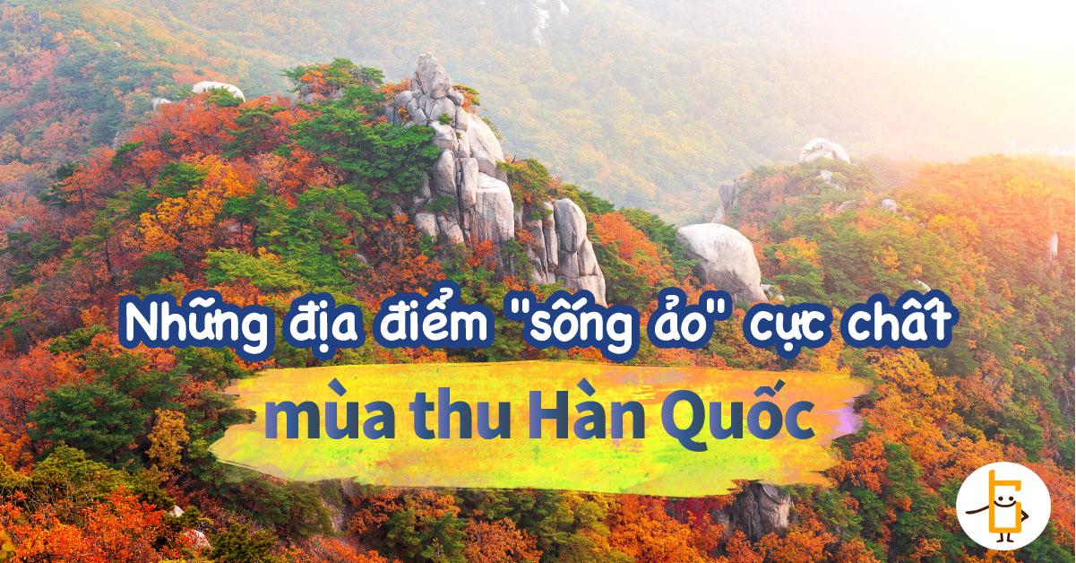 越南fb-banner-山-01.jpg
